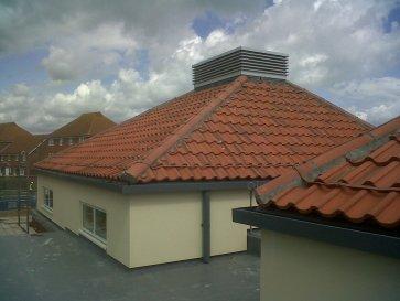IMG00498-20120515-1454